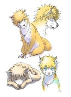 Naruto as the dog_01 by Soshi-Kaze