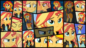 Sunset Shimmer Collage. by catdragon4
