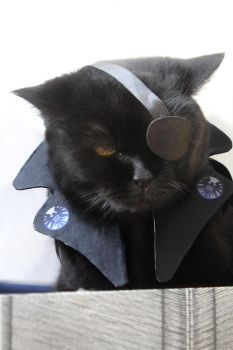 Nick Fury cosplay by MigraineSky