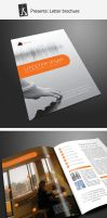 Corporate brochure 13 by demorfoza