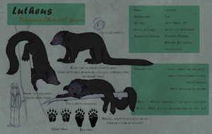 Lutheus Reference Sheet by Aphrael7