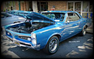 GTO Blue's by StallionDesigns