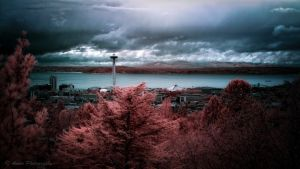 Seattle Infrared by Amoakk