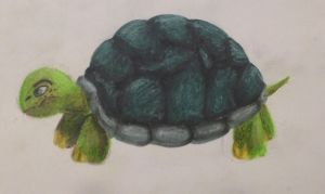 Turtle  by swiftcross