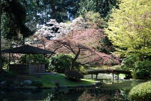 Nitobe Garden 1 by arieneforeveryoung