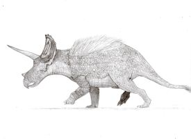 Triceratops by zoobuilder21