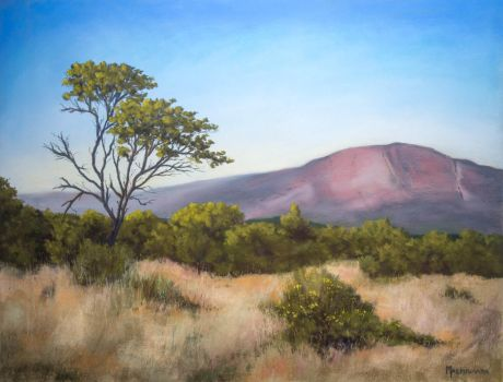 Landscape from Entabeni Game Reserve by Photolli
