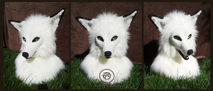 White Fox Head by FurryFactory
