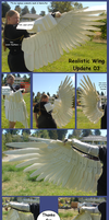 Realistic Wing - Update 03 by Sunnybrook1