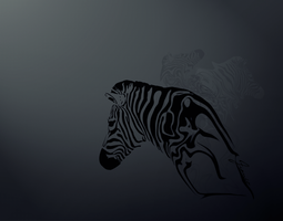 Zebra by david-designs