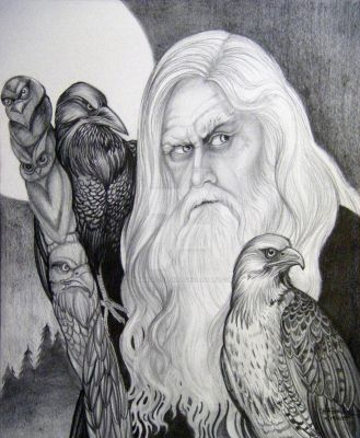 Wizard and Hawk Totem by HouseofChabrier