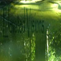 cd cover: Elevated Visions by shinichizen