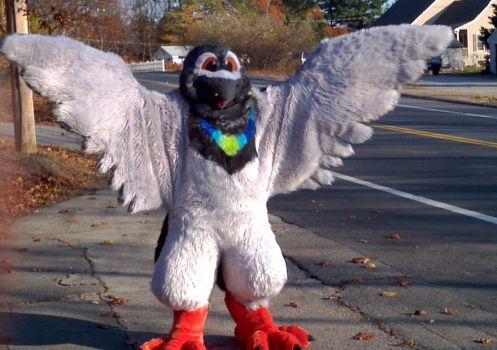 Alar's wing span by Gettinfluzzy