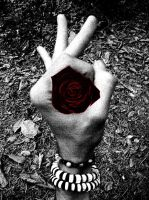 Me in a Rose... by MastroPino
