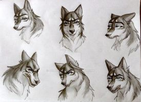 Expressions of a wolf. by GemDeWolf