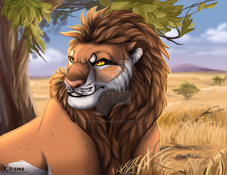 lion in the Savannah / YCH