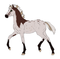 N3186 Padro Foal Design by casinuba