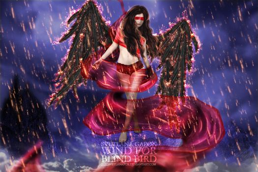 Wind For Blind Bird by SvetlanaFox