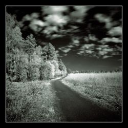 Landscapes .... ir by Koptelov