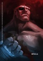 tribute street fighter 25 years_1 by zecarlos