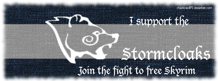 Stormcloak Support Banner for Facebook by ChaoticWolf75
