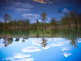 Reflections by LAPoetry-n-Photo