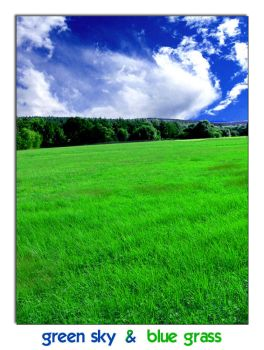 green sky and blue grass by dadirty