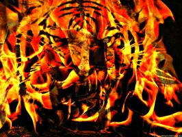 tiger of fire by NeonCandyLights