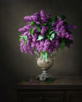 Still life with lilac by Daykiney