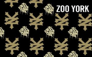 zoo york psp wallpaper by Thecrazylink