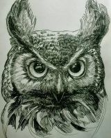#10 Great (Moody) Horned Owl by ComposedLines