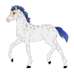 N3011 Padro Foal Design for RebeccaMArt by casinuba