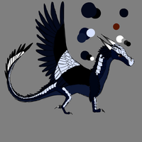 Magpie Reference (SORRY FOR SKETCHINESS! READ DESC by MacyGracie