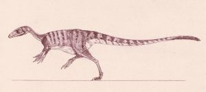 Sinocalliopteryx gigas by Kahless28
