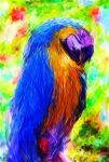 Parrot by domino6713