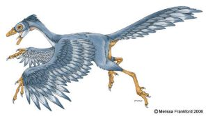 Archaeopteryx Concept by mmfrankford