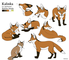 Character Sheet - Kalinka by BlueHunter