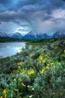 Storm at Oxbow Bend 2423 by pesterle