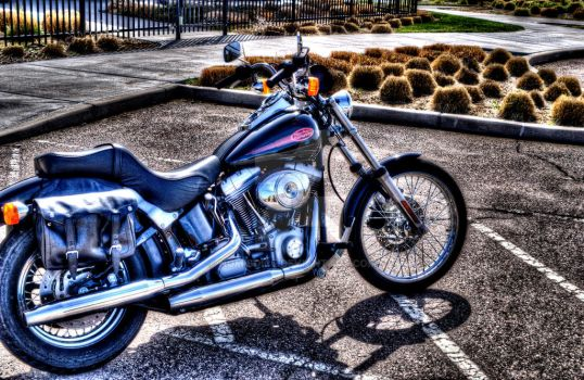 2000 Harley FXST by nomisdice
