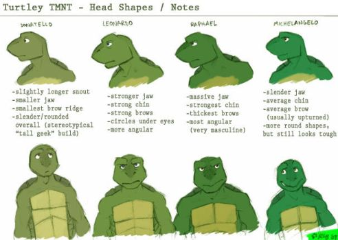 TMNT - Facial Differences by Kobb