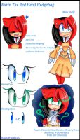 New 2017 Ref: Karin The Red Head Hedgehog by Coffee-Karin