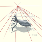 Insect Draw Through (1 point Perspective) by totopc