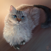 Pretteh Fluffeh Kitteh by Blunell