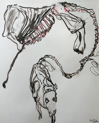 Skeleton Drawings 5 by joycie24