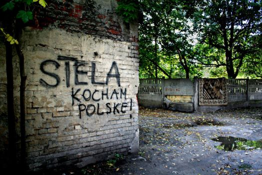 i love poland by CannonCat