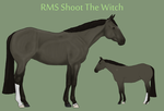 RMS Shoot the Witch by theRyanna