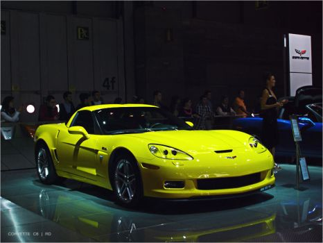 CORVETTE C6 by roma1dub