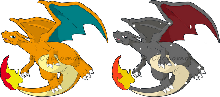 +006 - Charizard+ by Cachomon