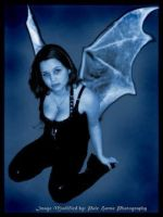 bat faery wing thing by miette