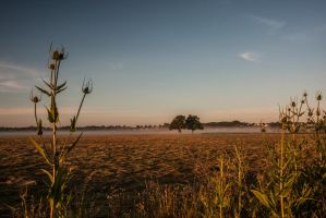 2014 06 21(0025) by dc58